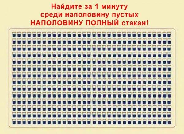 244041252_401559068144672_3219697973496853403_n.jpg